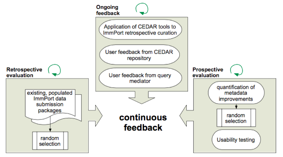 Diagram showing the built-in, continuous feedback loop in CEDAR's development process